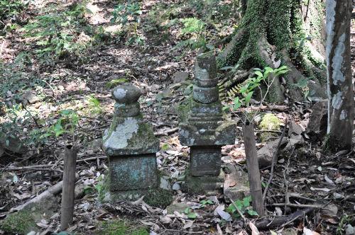 茶々丸の墓