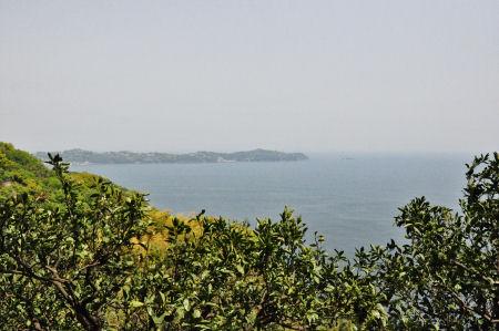 真鶴半島を望む