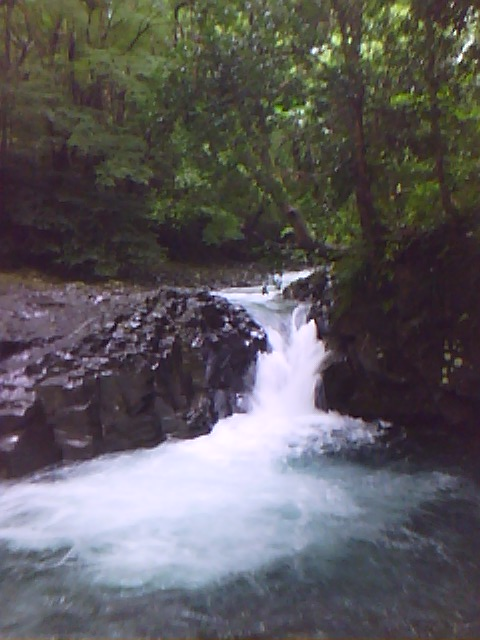 翌日見たかに滝